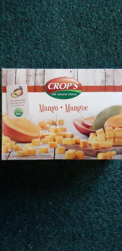 Sunripe - Mango gefroren von 123christoph  | Hochgeladen von: 123christoph