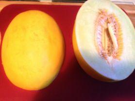 Honigmelone | Hochgeladen von: Jule0