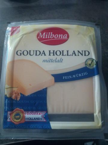 Gouda Holland (g.g.A.), am Stück, mittelalt, 48% Fett i.Tr. | Hochgeladen von: sven275