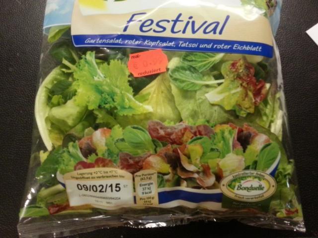 Festival Gartensalat   Hochgeladen von: Misio