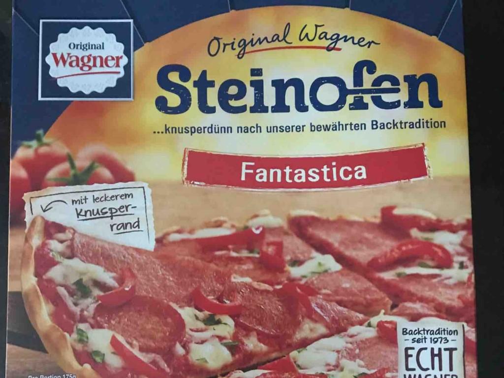 Steinofen Pizza, Fantastica von xtckamikaze | Hochgeladen von: xtckamikaze