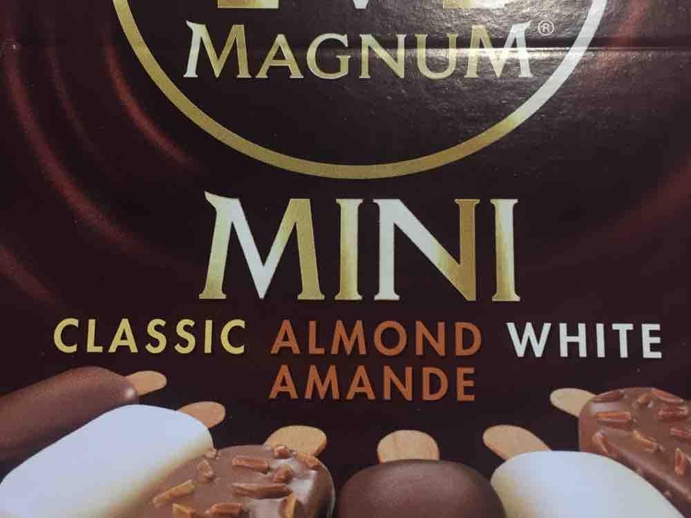 magnum mini kalorien