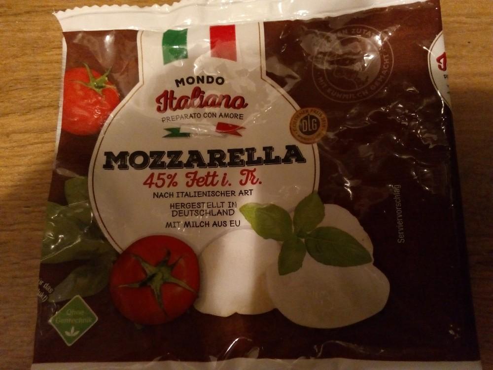 Mozzarella, Mondeo Italiano nach italienischer Art45% Fett i von partirsederisa | Hochgeladen von: partirsederisa