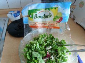 Frischer Salat-Mix Saison   Hochgeladen von: Bri2013