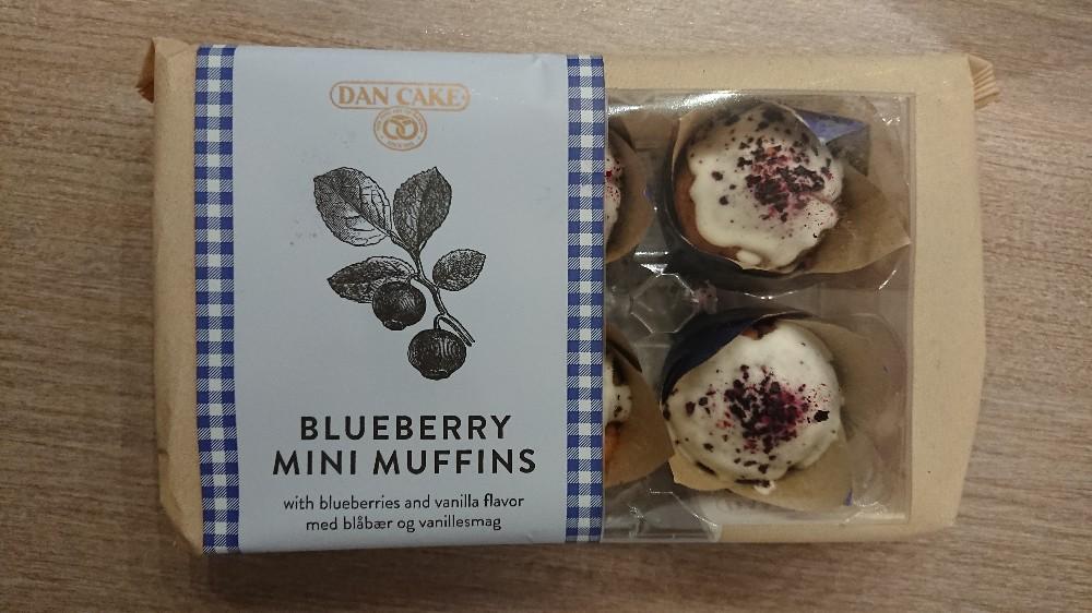 Blueberry Mini Muffins von K4thron | Hochgeladen von: K4thron