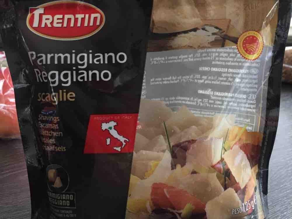 Parmigiano Reggiano von storchenvogel | Hochgeladen von: storchenvogel