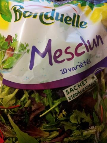 Bonduelle Mesclun Salat (Mischung mit 10 div. Jungsalaten) | Hochgeladen von: jetztaberrichtig
