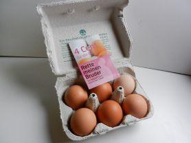 Eier, Bio Eier | Hochgeladen von: maeuseturm