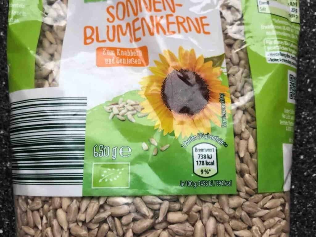 Sonnenblumen Kerne von StefanieGrommes | Hochgeladen von: StefanieGrommes