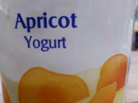 Yogurt, Apricot | Hochgeladen von: bodensee