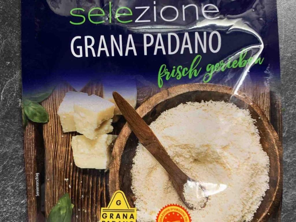 Grana Padano, Parmesan, mind. 32% Fett i. Tr. von infoweb161 | Hochgeladen von: infoweb161