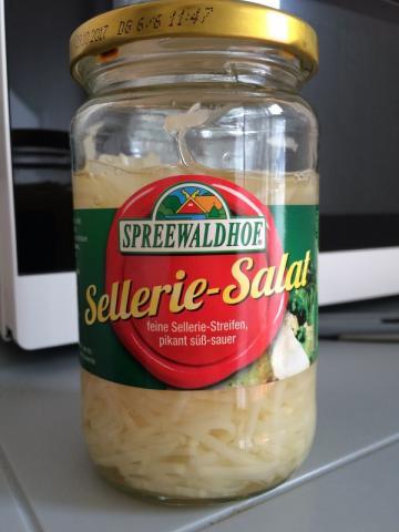 Sellerie-Salat, süß-sauer-pikant   Hochgeladen von: neonmag