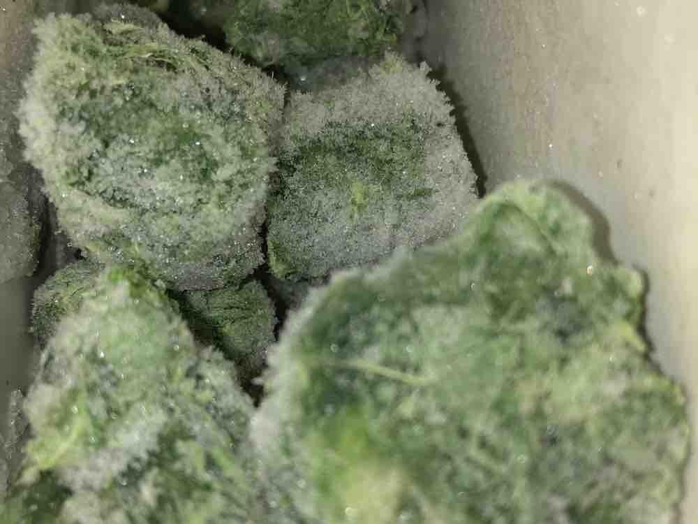 Blattspinat, erntefrisch tiefgefroren von brandes333   Hochgeladen von: brandes333