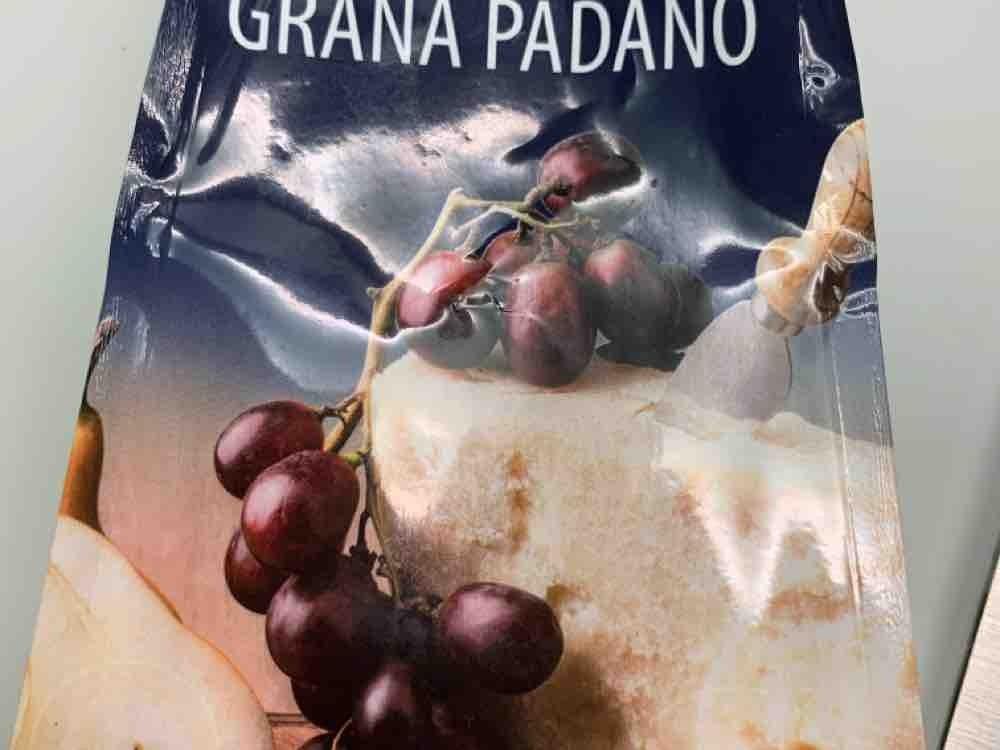 grana padano by bri1977 | Uploaded by: bri1977