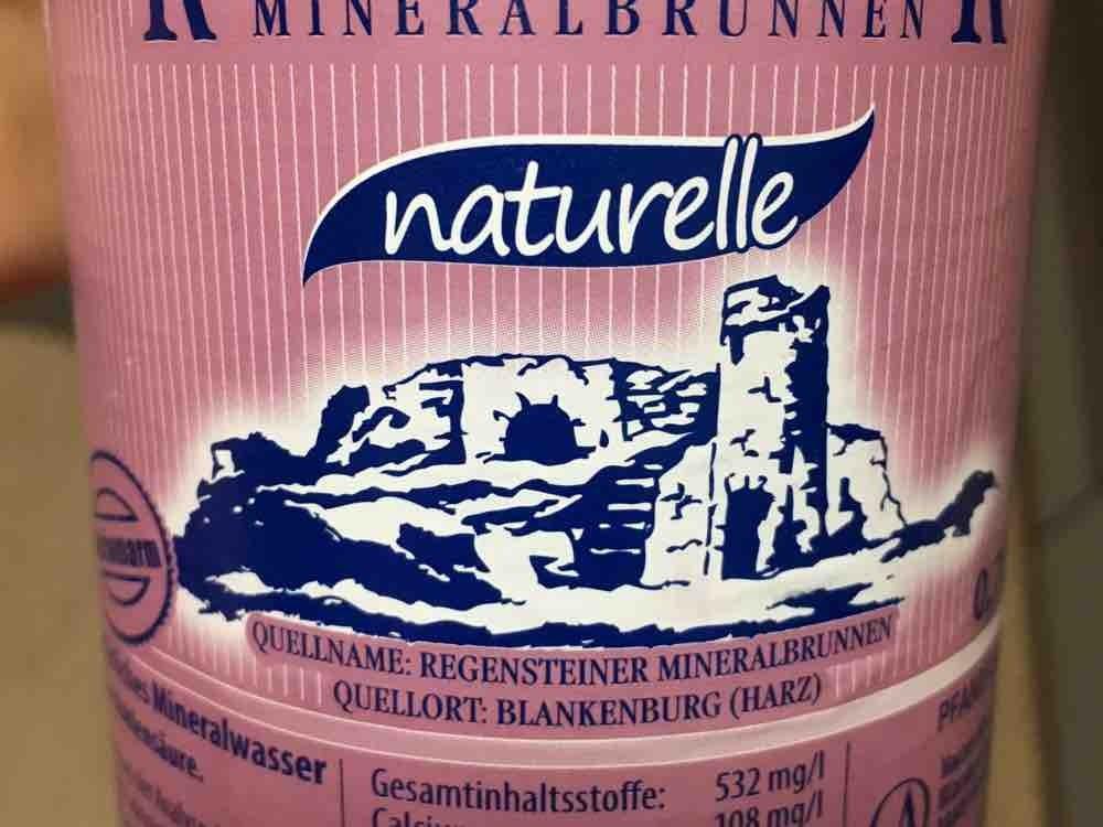 Regensteiner Mineralbrunnen, naturelle, ohne H2CO3 von DianeN | Hochgeladen von: DianeN