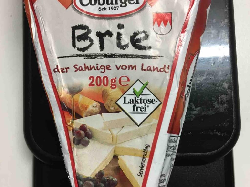 Brie, der Sahnige vom Land, Camembert von mcbru | Hochgeladen von: mcbru