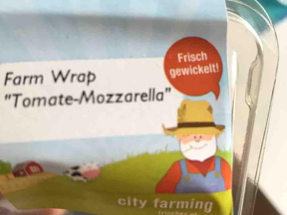 Farmer Wrap, Tomate Mozzarella von olivegrey | Hochgeladen von: olivegrey
