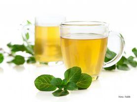 Tee, Pfefferminz | Hochgeladen von: julifisch