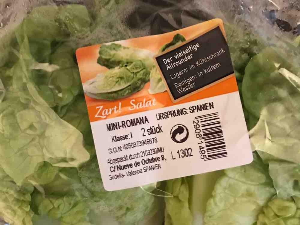 Aldi Mini Kühlschrank : Aldi mini romana kalorien neue produkte fddb