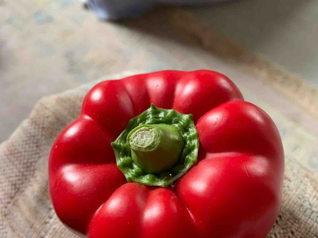 rote Paprikaschote von udoro | Hochgeladen von: udoro