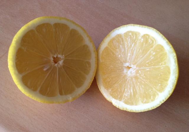 Zitrone, frisch | Hochgeladen von: xmellixx