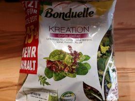 Salatkreation bunte Vielfalt, Lolo Rosso, Spinat, Eichlatt,    Hochgeladen von: cucuyo111