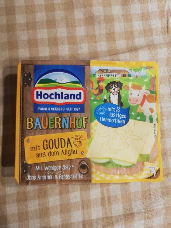Bauernhof Käse mit Gouda aus dem Allgäu von myxart | Hochgeladen von: myxart