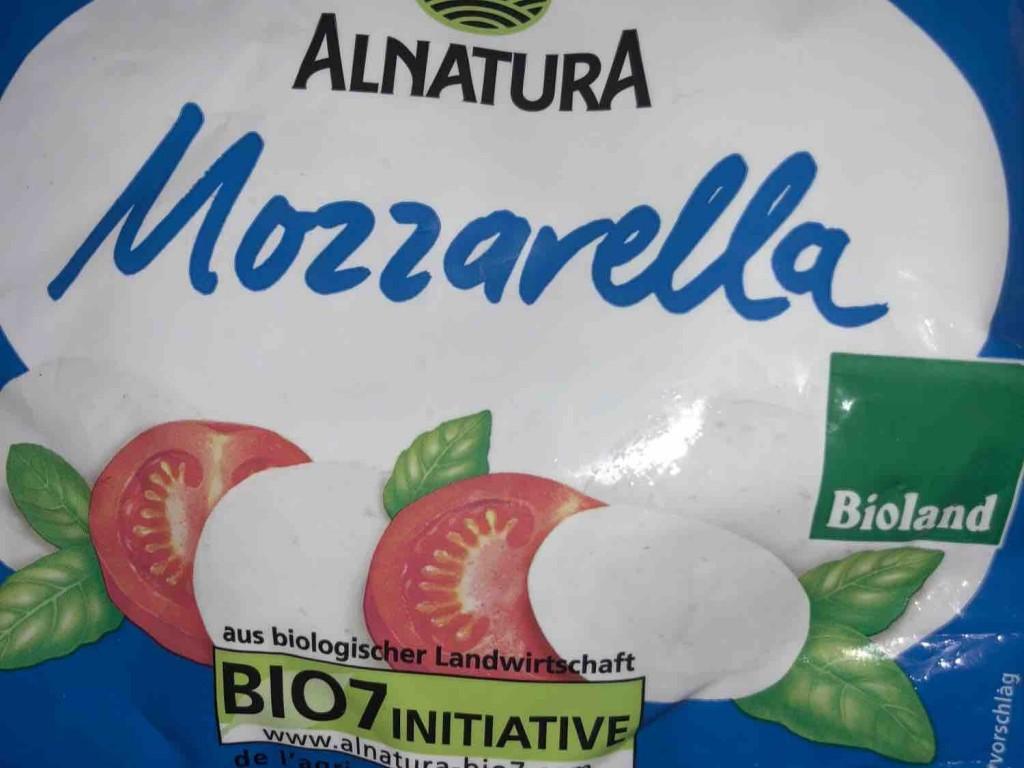 Mozarella in Salzlake , 45% Fett i.Tr. von woodcomp435 | Hochgeladen von: woodcomp435