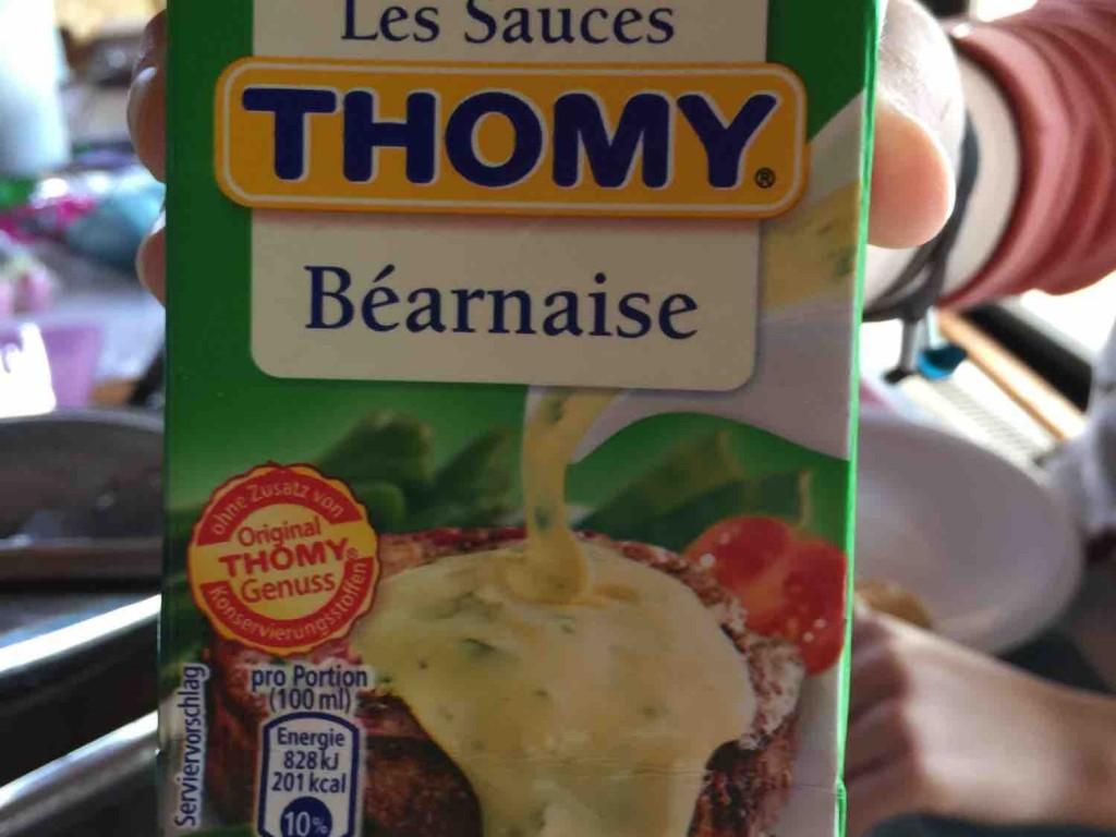 Les Sauces Béarnaise von EstherF | Hochgeladen von: EstherF