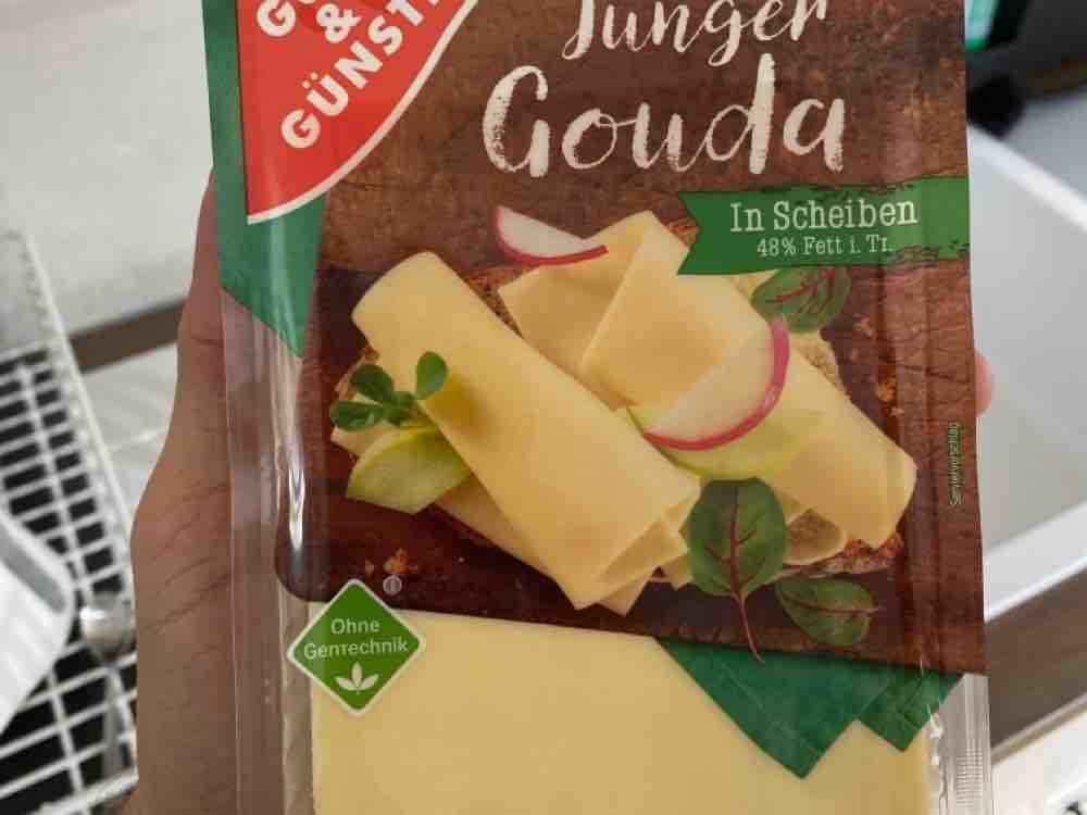 Gouda Käsescheiben, 48% Fett i. Tr. von TheArtmiral | Hochgeladen von: TheArtmiral