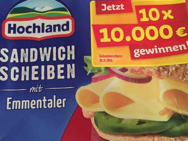 Sandwich Scheiben Emmentaler  von Nanna1812 | Hochgeladen von: Nanna1812