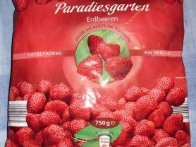 Erdbeeren Tiefgefroren Paradiesgarten | Hochgeladen von: Bellis