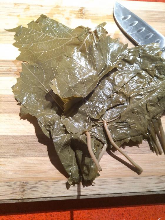 Weinblätter von Lichtkrieger | Hochgeladen von: Lichtkrieger