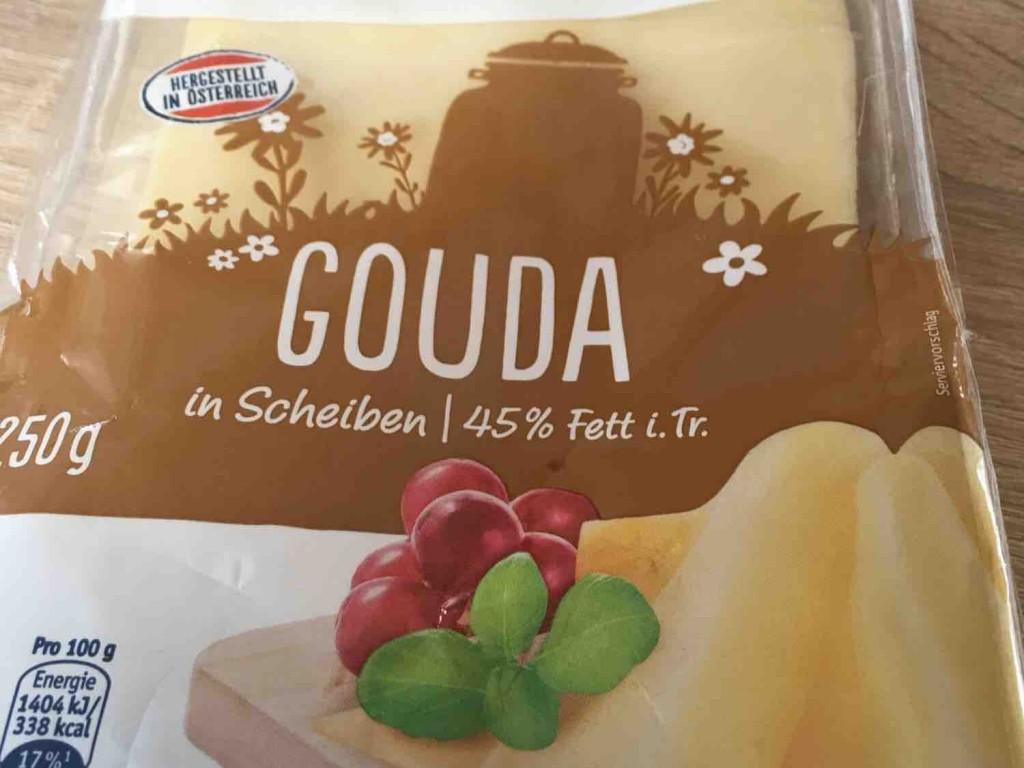 Gouda von moldascha1 | Hochgeladen von: moldascha1