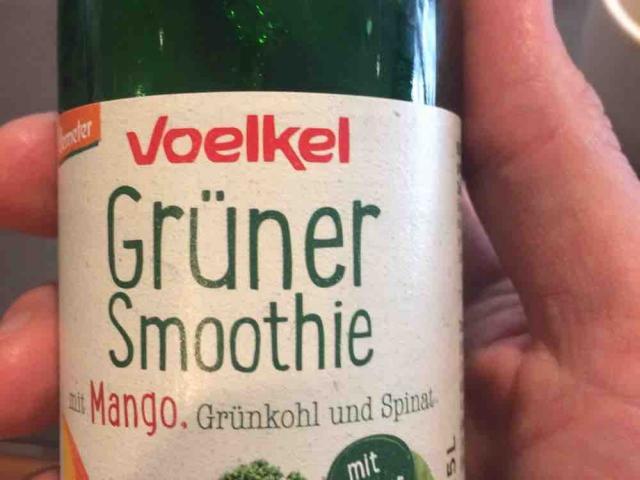 Grüner Smoothie, mit Mango, Grünkohl und Spinat von Dematizer | Hochgeladen von: Dematizer