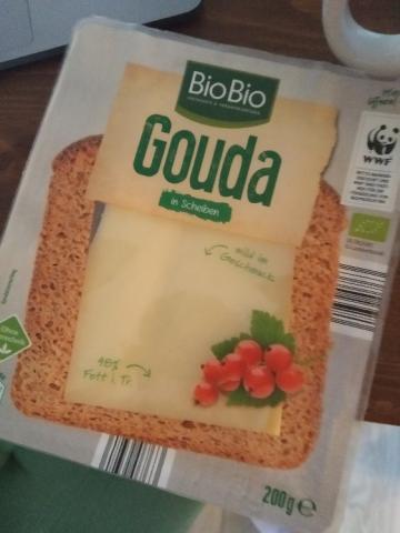 Gouda-Scheiben 48% Fett i. Tr. von sassi la gorda | Hochgeladen von: sassi la gorda