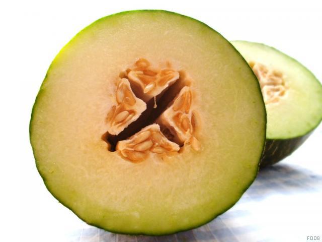 Cantaloupe-Melone   Hochgeladen von: JuliFisch