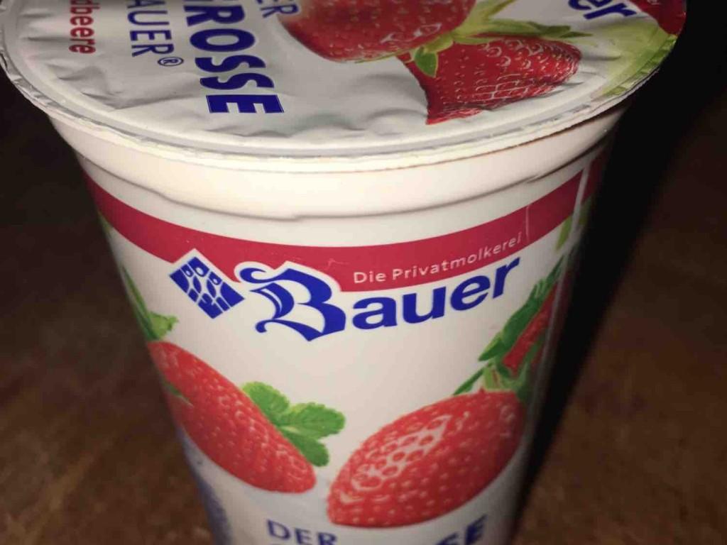 Der grosse Bauer, Erdbeere von bruenger   Hochgeladen von: bruenger