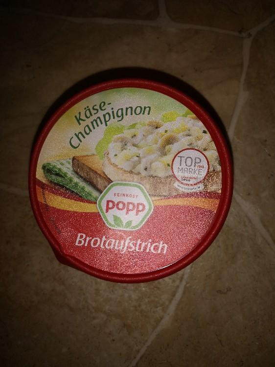 Käse-Champignon-Salat, Pikanter Brotaufstrich von Casaya | Hochgeladen von: Casaya
