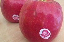 Apfel, Pink Lady | Hochgeladen von: xmellixx