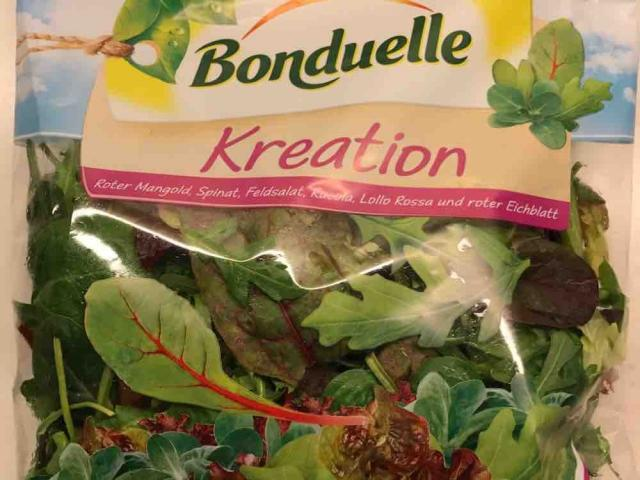 Salatmischung Kreation, Roter Mangold, Spinat, Feldsalat, Rucola, Lollo  von david11572 | Hochgeladen von: david11572