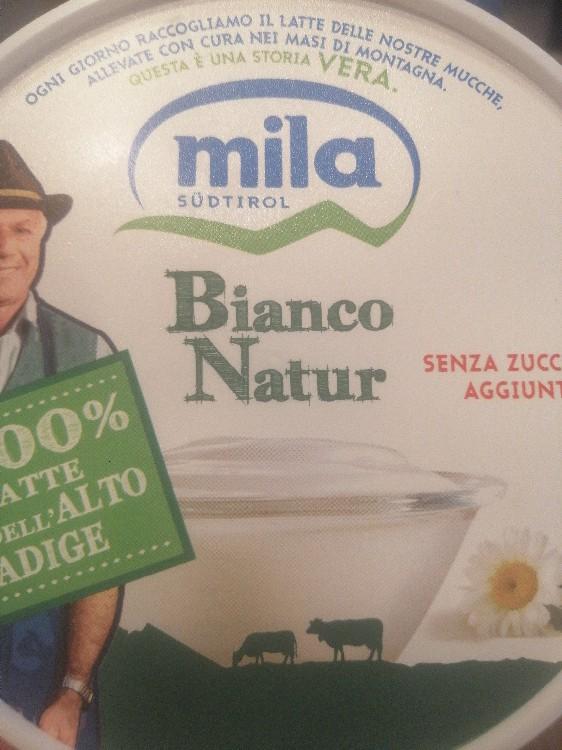 Mila Natur Yogurt, senza zucceri aggiunti von Raphimoosi13579   Hochgeladen von: Raphimoosi13579
