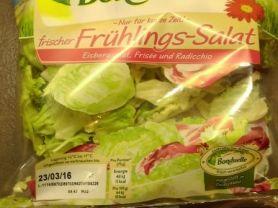 frischer Frühlings-Salat   Hochgeladen von: MaPe1980