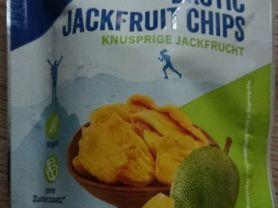 Exotic Jackfruit Chips   Hochgeladen von: Silv3rFlame
