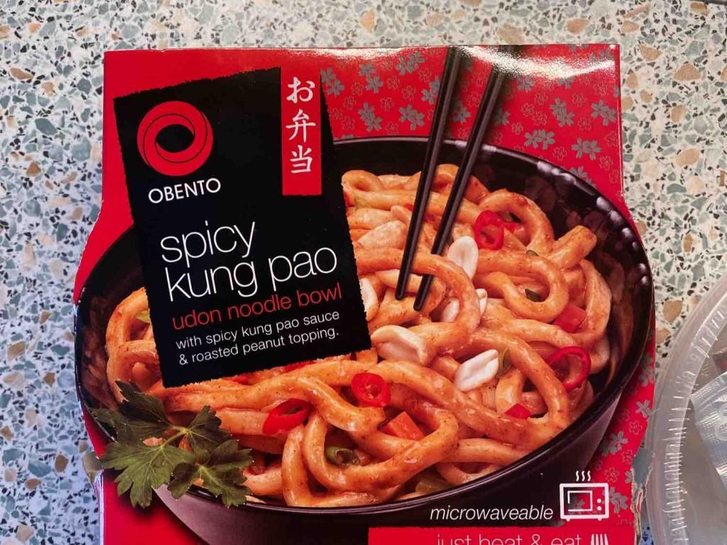 Obento spicy kung pao udon noodle bowl, scharf! von lennartleschowski | Hochgeladen von: lennartleschowski